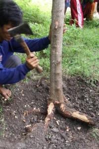 インドネシア報告(14) 写真レポート・アウトリガーを取り付ける 2009/1/15