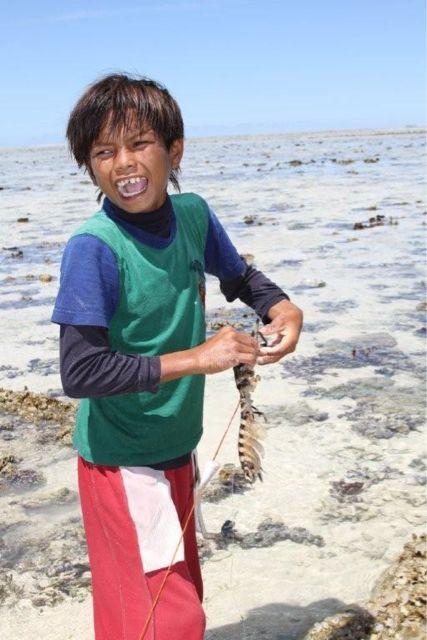 海のカマキリと言われる、巨大シャコ