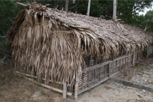 写真レポート・フィリピンに「縄文」「パクール」を点検に行く 2011/2/28