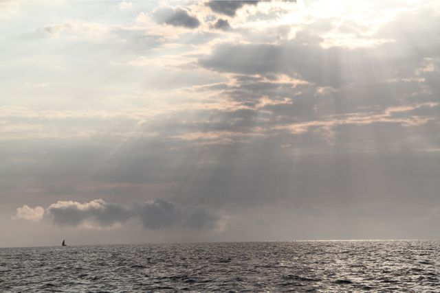 海は山と同じで頻繁に天候が変わる。雲の状態がいつも変わっていて、その状態によって日差しも変わる。木漏れ日が差しているくらいならいいが、雲がないと、じりじりと私たちを焼け焦がす。